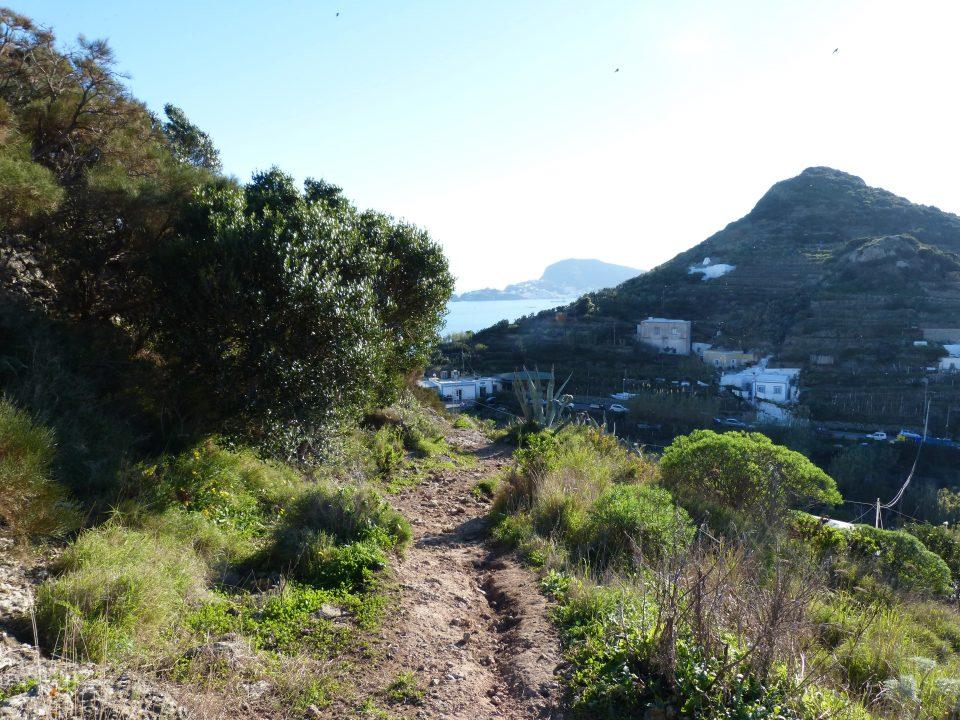 escursioni-ponza-punta-incenso